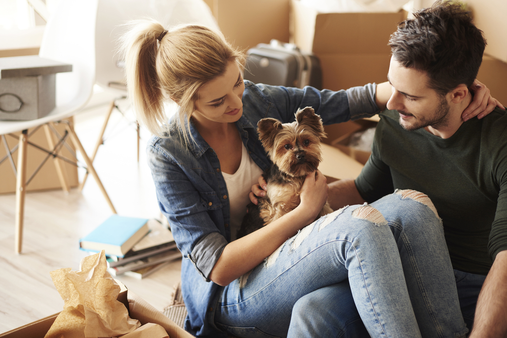 5 new condos dog owners will love Image