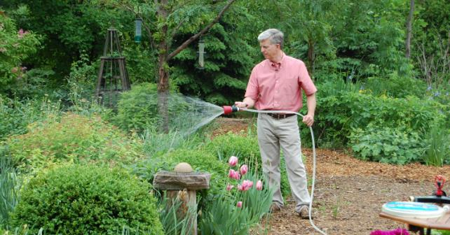 Watering tips that will make your home garden the best on the block Image