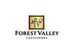 Forest Valley Image