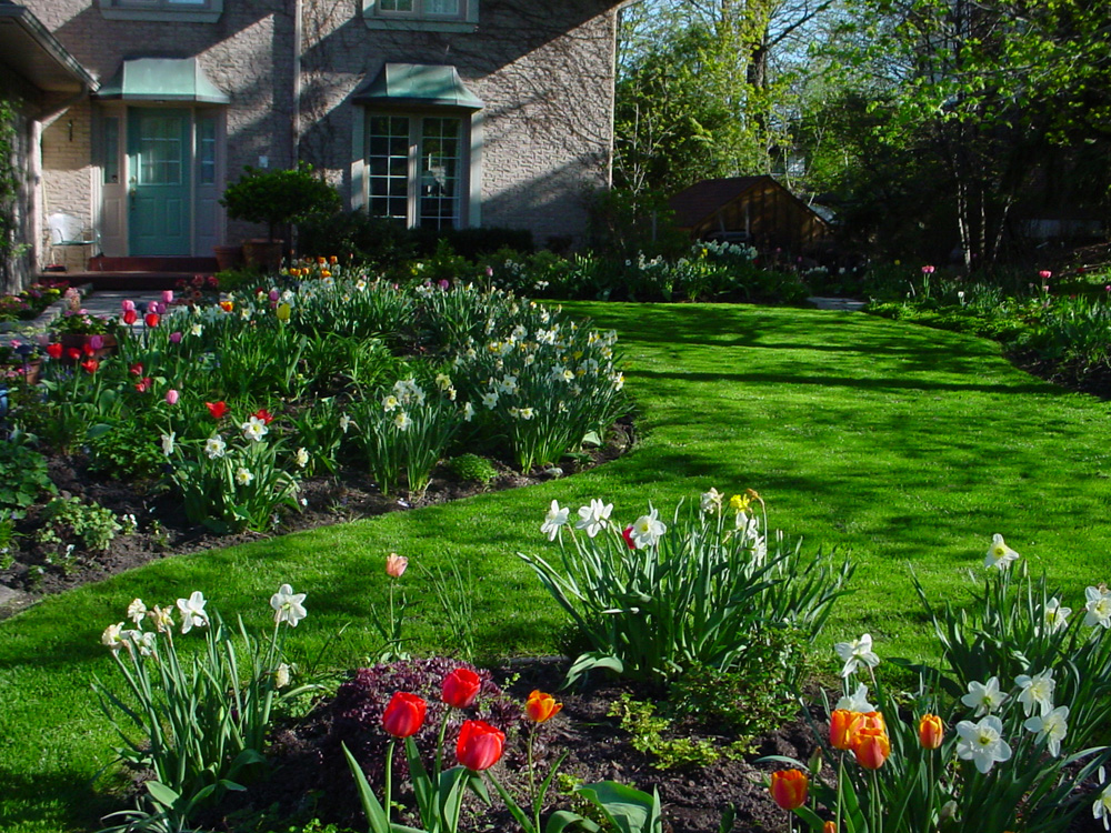 How to Have the Best Lawn on the Block! Image