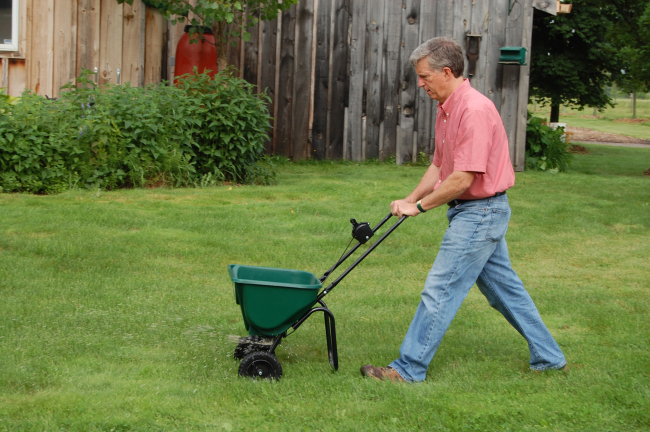 MARK CULLEN: Summer Lawn Care Tips Image