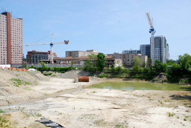 Looking south at Fuse. The open land is reserved for three more condo towers!