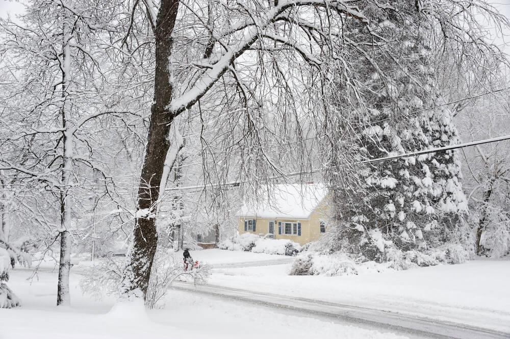 Tips to help you prepare for the worst snowstorm Image