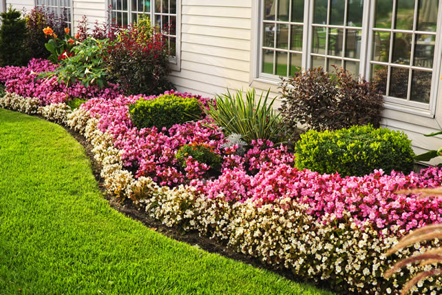 5 tips for irresistible front yard landscaping Image