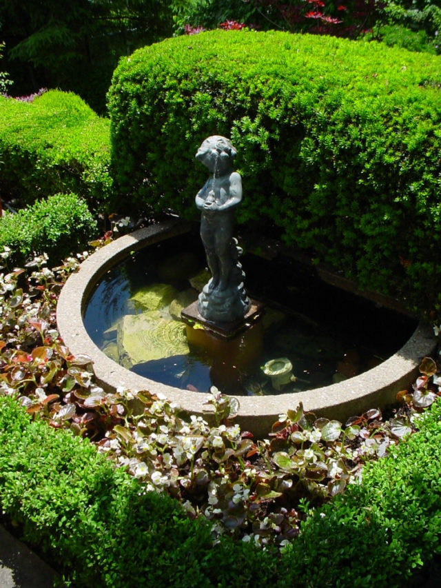 A small water feature may be good for gardeners with limited space