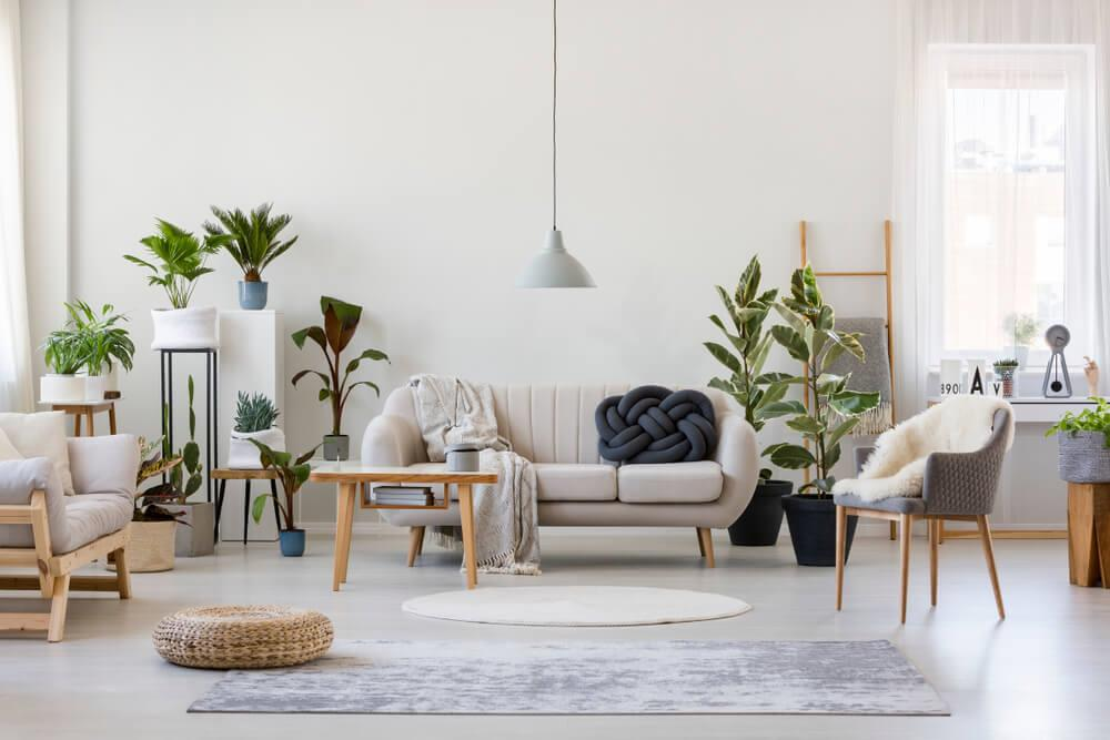 How to redesign your living room without breaking the bank Image